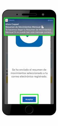 estado-de-cuenta-afore-coppel-app5