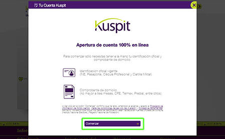 kuspit-14