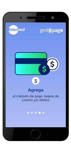 mi-ticket-wallet-consultar-saldo-5